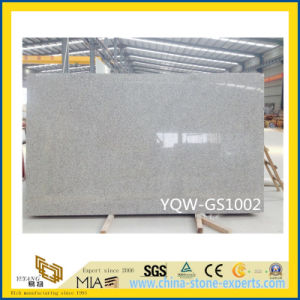 New Order Natural G602 Grey Granite Slab with Own Quarry pictures & photos