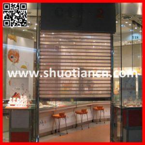 Vision Auto Polycarbonate Sheet Shutter Door (ST-004) pictures & photos