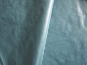 20d Nylon Taffeta Fabric for Down Coat (XSN008) pictures & photos
