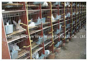 Pigeon Cage Rabbit Cage Pet Cages pictures & photos