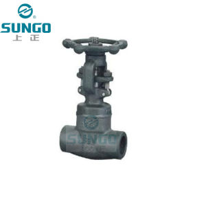 Forged Steel Gate Valve 1 Inch pictures & photos