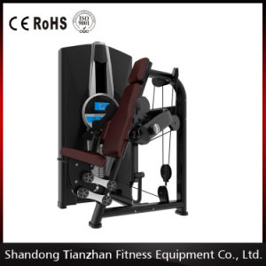 High Quality Strength Machine / Tz-8006 Back Extension Gym Machine pictures & photos