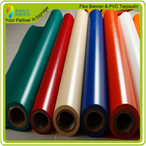 PVC Coated Tarpaulin for Truck Cover (RJCT003) pictures & photos