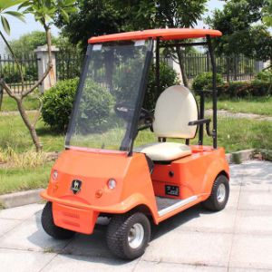 China Factory Price Offer Single Seater Golf Buggy (DG-C1) with CE Approved pictures & photos