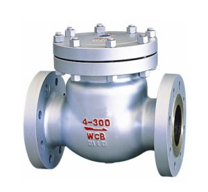 Cast Steel Flanged End Swing Check Valve (H44) pictures & photos