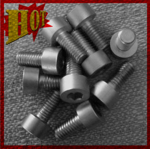 Customized Titanium Alloy Screw for Sale pictures & photos