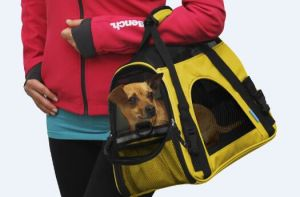 Pet Carrier Dog Carrier Cat Carrier Pet Carry House Bag pictures & photos