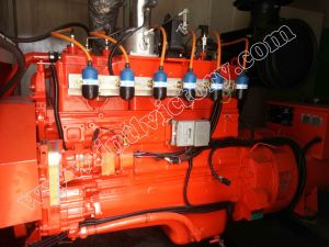 250kw/312kVA Cummins Gas Engine Generator with CE/Soncap/CIQ Certifications pictures & photos