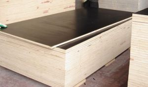 Film Faced Plywood 1220X2440X 18mm Black Film