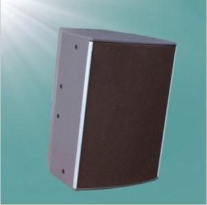 500W Powerful Mega Bass Portable Speaker pictures & photos