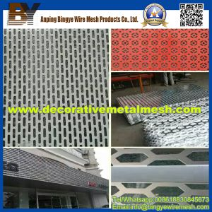 Hexagonal Perforated Metal for Decorative pictures & photos