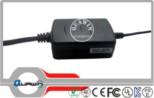 25.2V 0.5A Li-ion Lithium Battery Charger pictures & photos