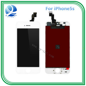 Original Spare Parts LCD Screen for iPhone 5s Mobile Phone LCD pictures & photos
