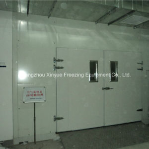 Manual Double Swing Insulated Door for Cold Storage Room pictures & photos