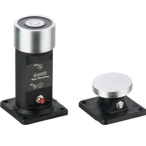Door Magnetic Switch Dz828A pictures & photos