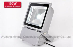 100W COB LED Flood Light/ Working Light/ Outdoor Use Light pictures & photos