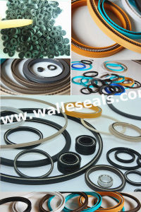 Variseal PTFE Spring Seals pictures & photos