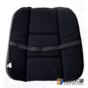 Car Waist and Sear Cushion (WY5111) pictures & photos