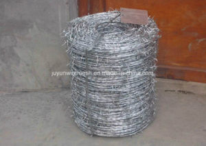 Hot Dipped Galvanized/Stainless Steel Double Twist Barbed Wire pictures & photos
