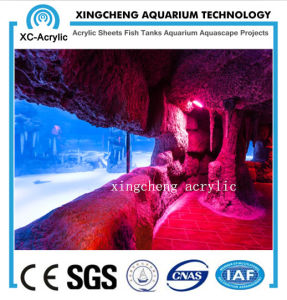 PMMA Material Aquarium for Aquariu pictures & photos