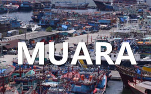 Ocean Freight From Lianyungang, China to Muara, Brunei pictures & photos