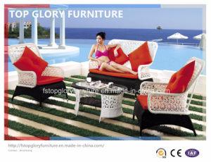 Modern Outdoor Garden Patio Furniture Wicker Sofa (TG-080) pictures & photos