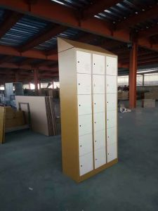 Steel Cabinet (FEC TG01) pictures & photos