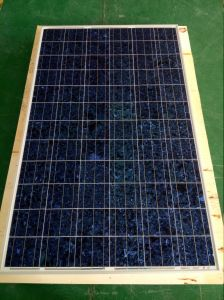 325W Colorful Poly Solar Module pictures & photos