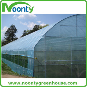 Tomato Planting Multi-Span Tunnel Green House pictures & photos