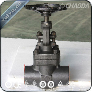 API 800lb NPT/Female Threaded Forged Gate Valve pictures & photos