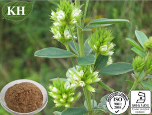 100% Natural Lespedeza Capitata Extract 6% Flavones pictures & photos