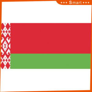 Custom Waterproof and Sunproof National Flag Belarus National Flag pictures & photos