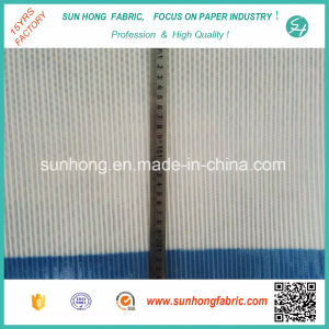 100% Polyester Spiral Dryer Fabric for Paper Making /Machine pictures & photos