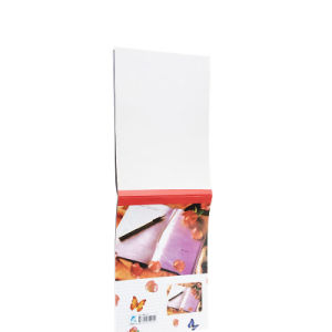 Cheap Four Colors Custom Notebook Exercise Notebook Printing pictures & photos