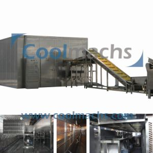 High Qualitiy Tunnel Freezer IQF Machine/IQF Machine pictures & photos