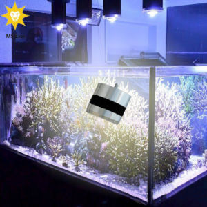 Blue White Dimmable 50W LED Aquarium Light for Coral Reef Tank pictures & photos