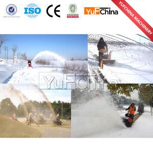 Triangular Crawler Snow Blower/Portable Snow Blower pictures & photos