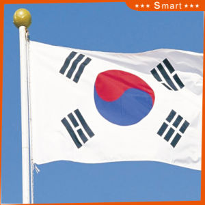 Custom Waterproof and Sunproof National Flag South Korea National Flag Model No.: NF-029 pictures & photos