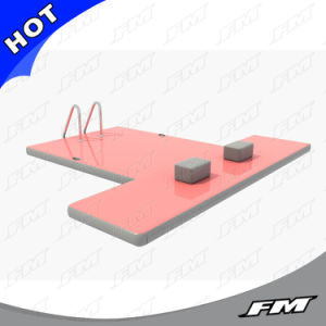 FM Top Quality Floating Inflatable Pontoon Dock pictures & photos
