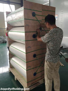 Silver Aluminum Metallized CPP Film 30mic for Flexible Packaging pictures & photos
