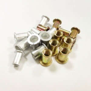 Flat Head Knurled (Round) Body Rivet Nut pictures & photos