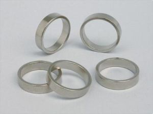 Radial Ring Permanent Neodymium pictures & photos