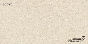 Semi-Polished Interior & Exterior Wall and Floor Porcelain Thin Tile (600X1200X5.0)