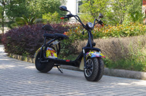 Factory Best Quality Newest 1000W Citycoco Scooter with Ce Approved (JY-ES005) pictures & photos