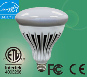 Low Price 20W E26 LED Bulb Light/LED Light Bulb Wholesale pictures & photos