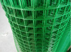 China Factory Wire Mesh Fence Eurofence pictures & photos