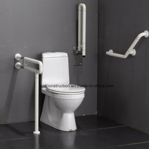 Accessible Public Flooring Grab Bar for Elderly and Disabled pictures & photos