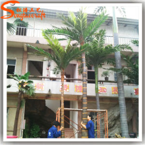 Hot Sale Artificial Coconut Palm Tree for Decoration pictures & photos
