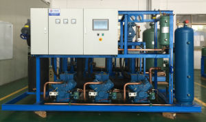 Cooling System Equipment for Food Refrigeration pictures & photos