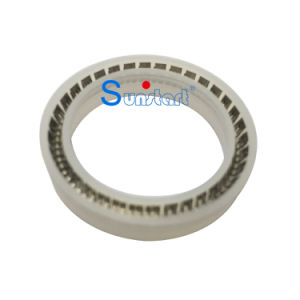 Sunstart Spring-Energized Rod Seal Ring Made in China